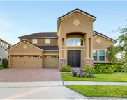 11619 Brickyard Pond Lane, Windermere image