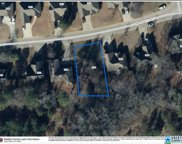 260 Ammersee Lakes Dr Unit 16, Montevallo image
