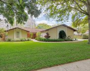 15917 Nottinghill Drive, Lutz image
