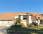 3683 Executive Drive, Palm Harbor image