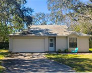 1313 N PIKE LANE, Fernandina Beach image