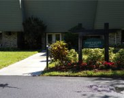 36750 Us Highway 19  N Unit 19311, Palm Harbor image