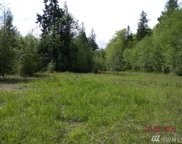5051 Skidder Hill, Quilcene image