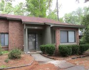 102 Cricket Ct Unit 102, Conway image