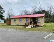 13966 Hwy 411, Odenville image