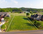 821 Rarity Bay Pkwy, Vonore image