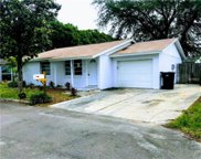 8907 High Ridge Court, Tampa image