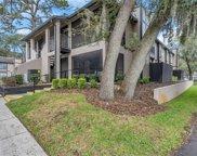 14724 Norwood Oaks Drive Unit 203, Tampa image