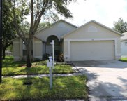 11121 Lakeside Vista Drive, Riverview image