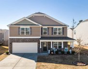 1113 Raven Perch Drive, Wendell image