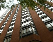 901 South Plymouth Court Unit 1604, Chicago image