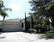 5447 Rishley Run Way, Mount Dora image