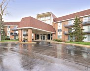 1188 Royal Glen Drive Unit 222C, Glen Ellyn image