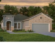 6001 Burrowing Owl Place, Lithia image