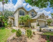 14248 Squirrel Run, Orlando image