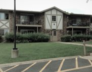 9S220 Lake Drive Unit 16-211, Willowbrook image