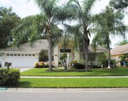 6539 Steeplechase Drive, Tampa image