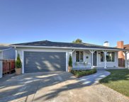 3369 Pepper Tree Ln, San Jose image