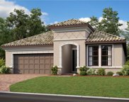 20147 Umbria Hill Drive, Tampa image