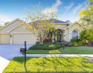 2743 Blue Springs Place, Wesley Chapel image