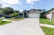 9709 White Barn Way, Riverview image