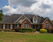 145 Jamesfield  Drive, Rutherfordton image