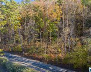 3385 Overbrook Rd Unit 109, Mountain Brook image