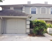 14112 Trouville Drive, Tampa image