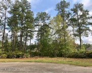 1598 GREEN MOSS LN, Orange Park image