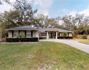 2431 Greenacre Road, Apopka image