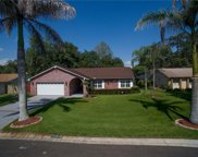 11418 Country Oaks Drive, Tampa image
