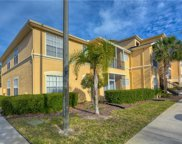 5125 Palm Springs Boulevard Unit 11306, Tampa image