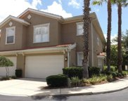 4917 Anniston Circle, Tampa image