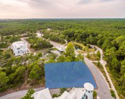125 Hogpenny Alley, Alys Beach image