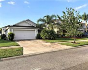 10735 Shady Preserve Drive, Riverview image