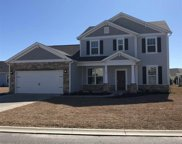 113 Copper Leaf Dr., Myrtle Beach image