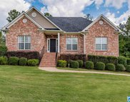 100 Crooked Creek Ln, Odenville image