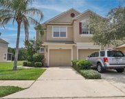 2816 Conch Hollow Drive, Brandon image
