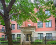 1500 South Halsted Street Unit 2B, Chicago image