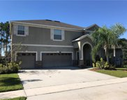 14748 Crosston Bay Court, Orlando image