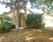 6122 Whimbrelwood Drive, Lithia image