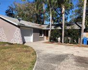 7315 W Cluster Avenue, Tampa image