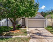 18133 Leafwood Circle, Lutz image