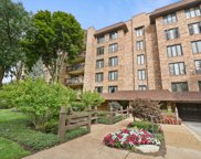 3810 Mission Hills Road Unit 402, Northbrook image