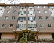 539 West Stratford Place Unit 207, Chicago image