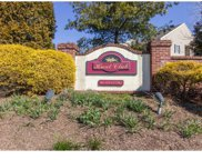 145 Hunt Club Drive, Collegeville image