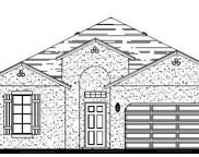6746 Devesta Loop, Palmetto image