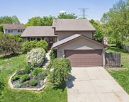 13866 West Shady Lane, Homer Glen image