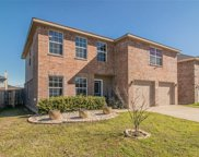 10532 Winding Passage Way, Fort Worth image