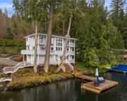 23903 S Lake Roesiger Rd, Snohomish image